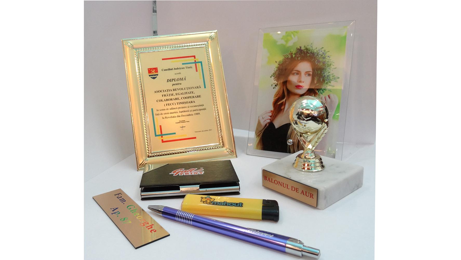 Brichete, pixuri, diplome, trofee personalizate